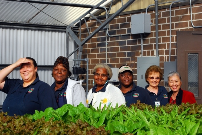 Kitchen staff and district dietitian visit the greenhouse during harvest