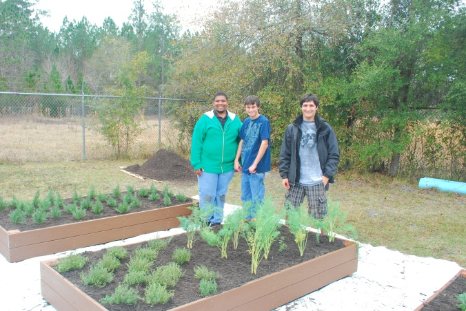 The AMT company (Arthur, Matt and Tudorell) continue to rise to every horticultural challenge.