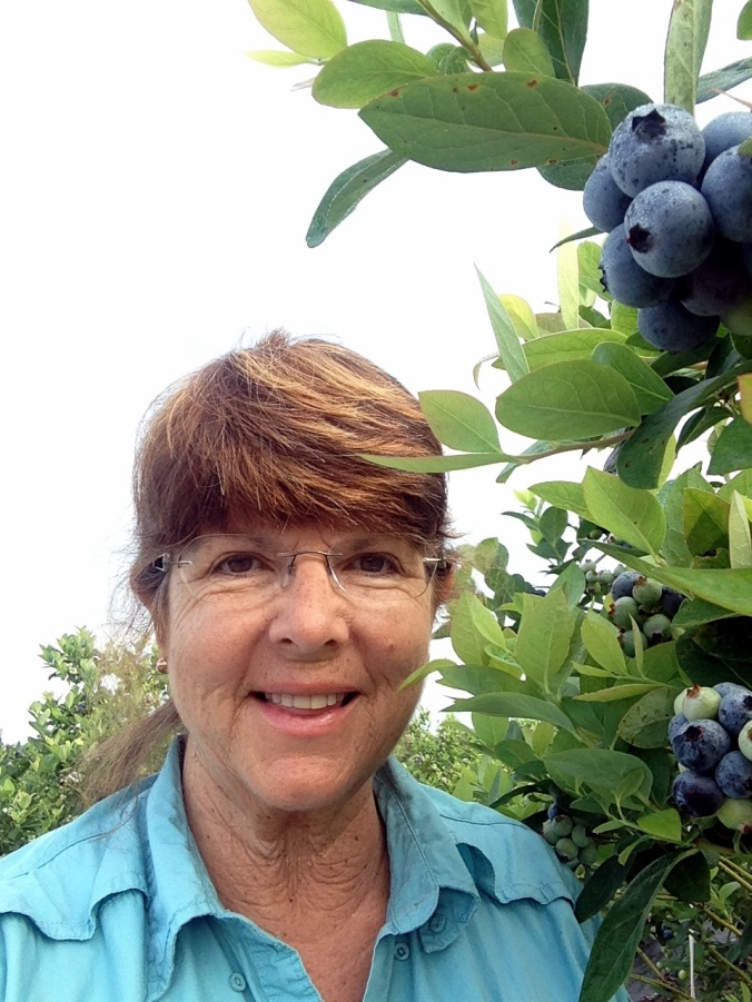 Donna Miller of D&J Blueberry Farms in Inverness