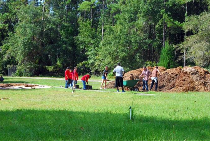 Grassy area is future school garden demo garden. The first task is to cover and mulch.