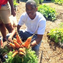 carrot bouquet - willard